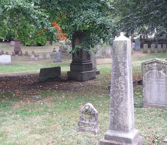 Mount Auburn Cemetery 047