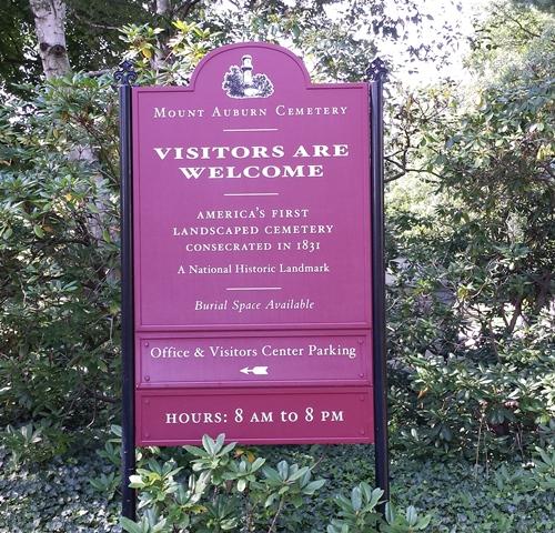 Mount Auburn Cemetery 010